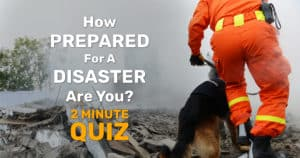 Search And Rescue Man And Dog Searching Rubble From Disaster