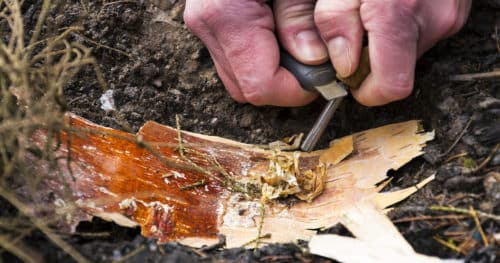 Survival Gear Start Fire With Magnesium